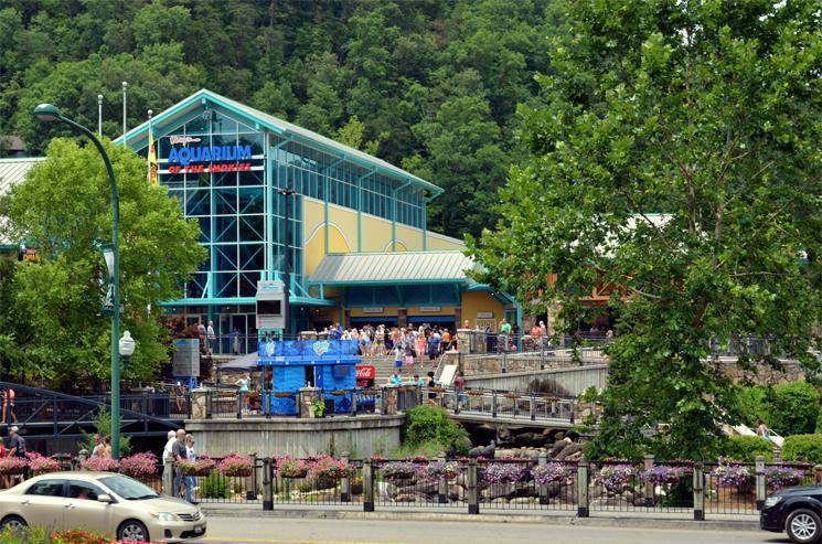 The Aquarium of the Smokies, Gatlinburg, Gateway to the Great Smoky Mountains National Park