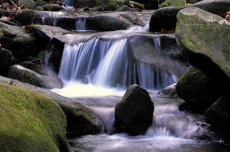 Roaring Fork Cascade, Great Smoky Mountain National Park