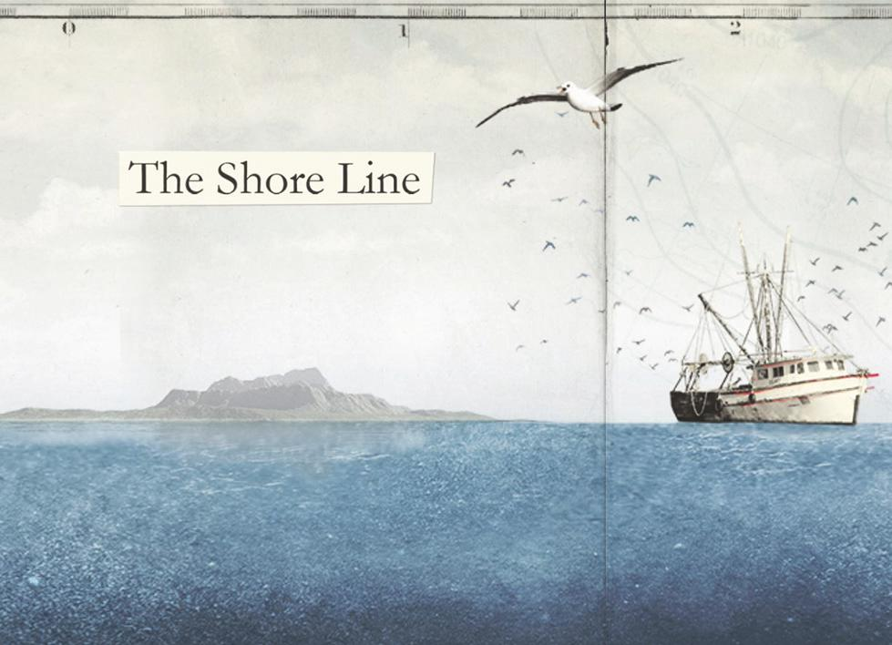 The Shore Line Project - detail of website
