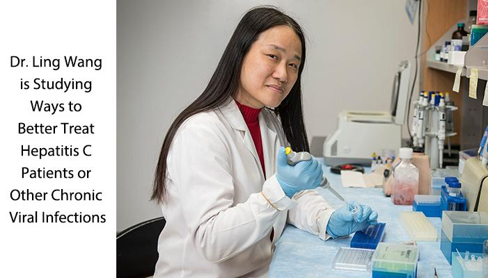 Researcher, Dr. Ling Wang, Studying Better Treatments for Hepatitis C