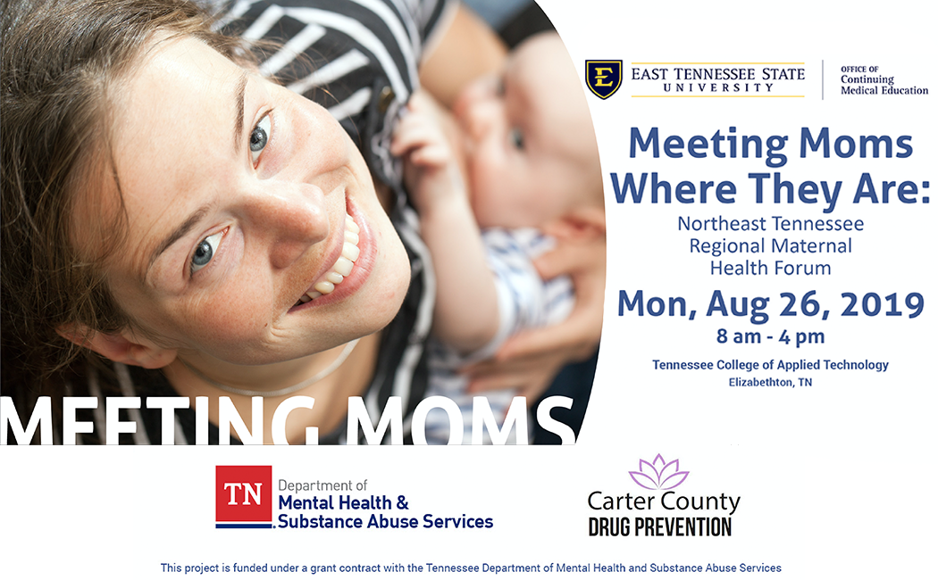 Meeting Moms Where They Are: Northeast Tennessee Maternal Health Forum