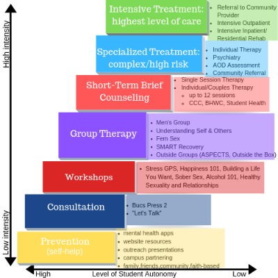 Stepped Care Model